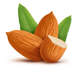 Almond - protein rich for growth serum